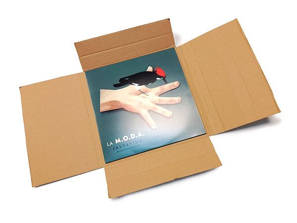 caja-vinilos-LP